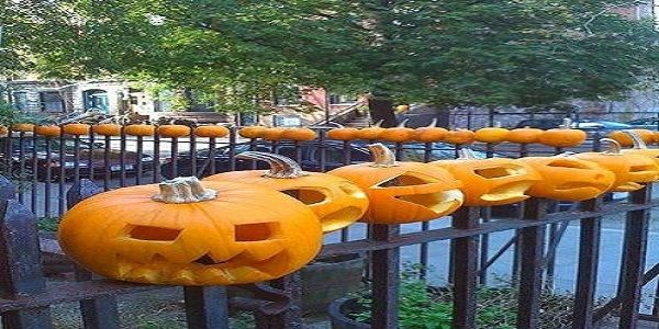Homemade Halloween Yard Decoration with Pumpkin Line-Up on the Fence