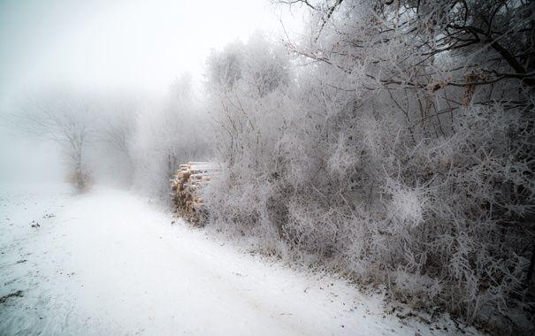 Обои зима, дрова, туман, иней картинки на рабочий стол, раздел природа - скачать