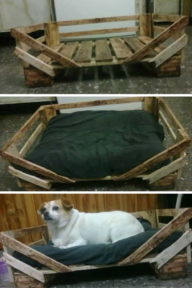122 best pallet pet furniture images on pinterest pallet wood reclaimed pallet dog bed pallet dog bedsdiy solutioingenieria Image collections