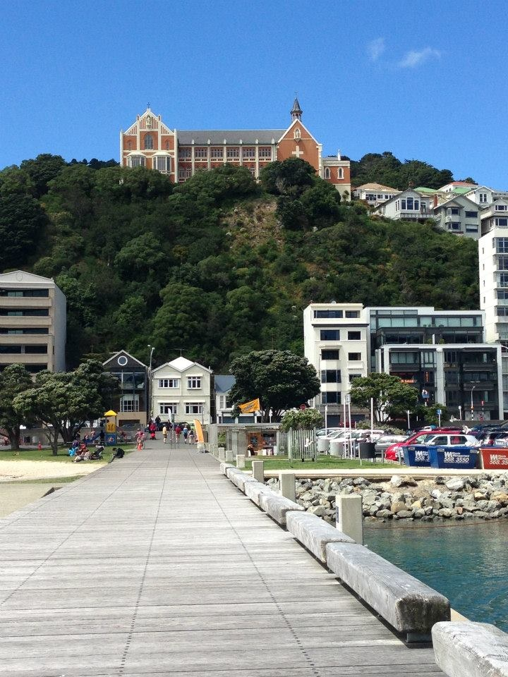 Oriental Bay - easily accessible from Piermont Apartments and the perfect place to relax in the sun with an ice cream  John Kettle - Wellington Real Estate Agent, Apartment Specialist - http://www.tommys.co.nz/head-office/agent/john-kettle
