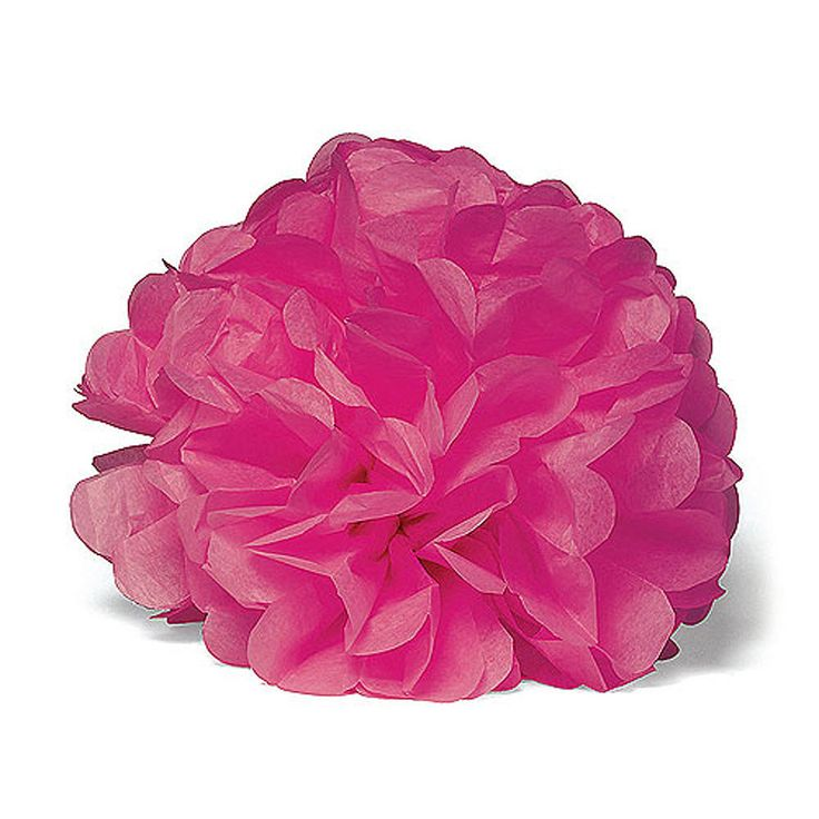 """Celebration Peonies"" Tissue Paper Flowers X Large Fuchsia (2)"