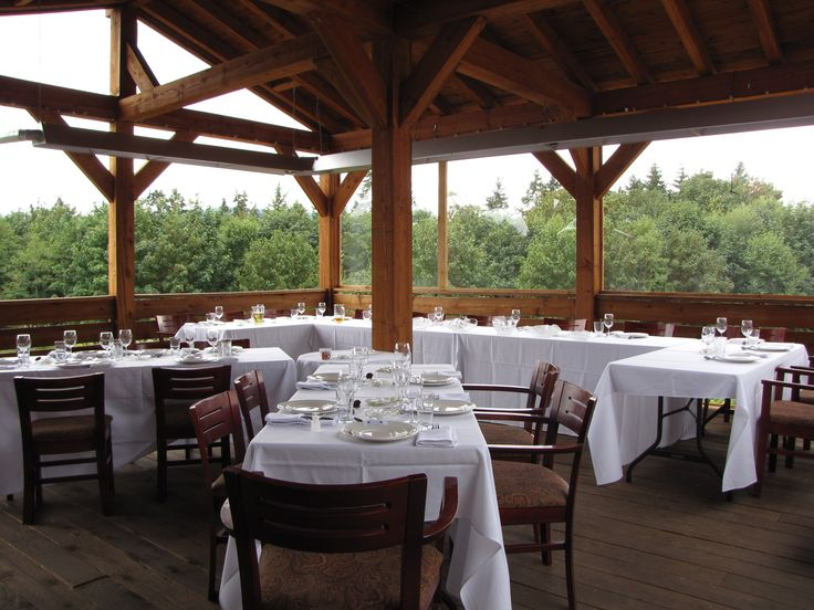 The head table overlooking the orchard and pond at a Merridale Cidery wedding.