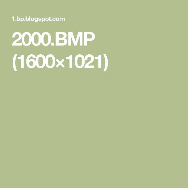 2000.BMP (1600×1021)