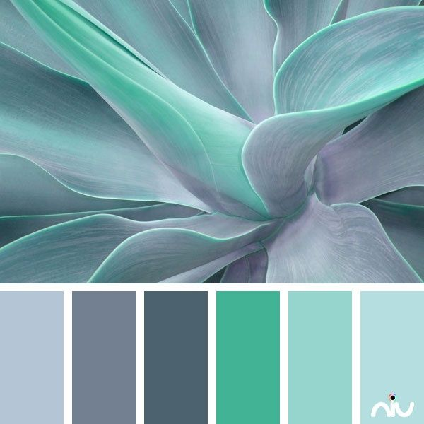 Aquamarine Paint Colors Via Bhg Com: Turquoise Room Decorations