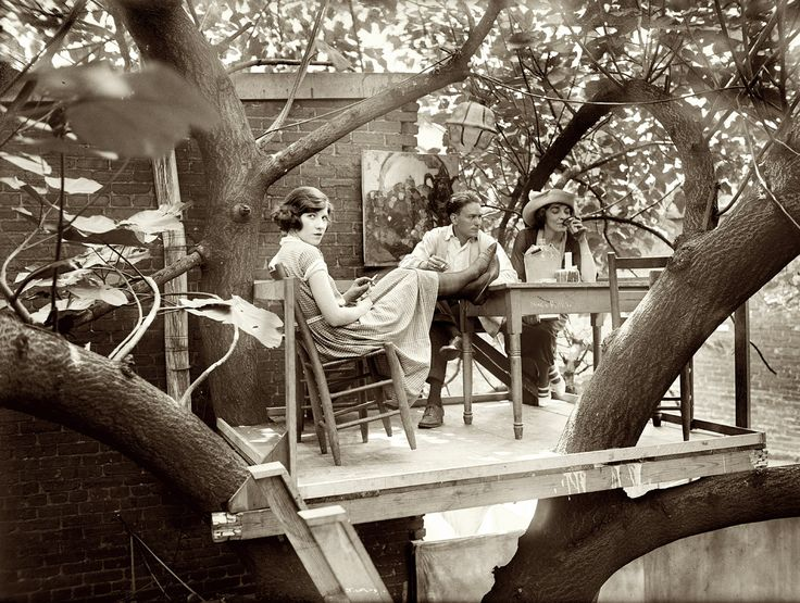 July 15, 1921.  Treetop table at the Krazy Kat club in Washington.  National Photo Company Collection glass negative.