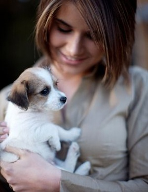 Choosing a Puppy: Daunting and Herculean Task