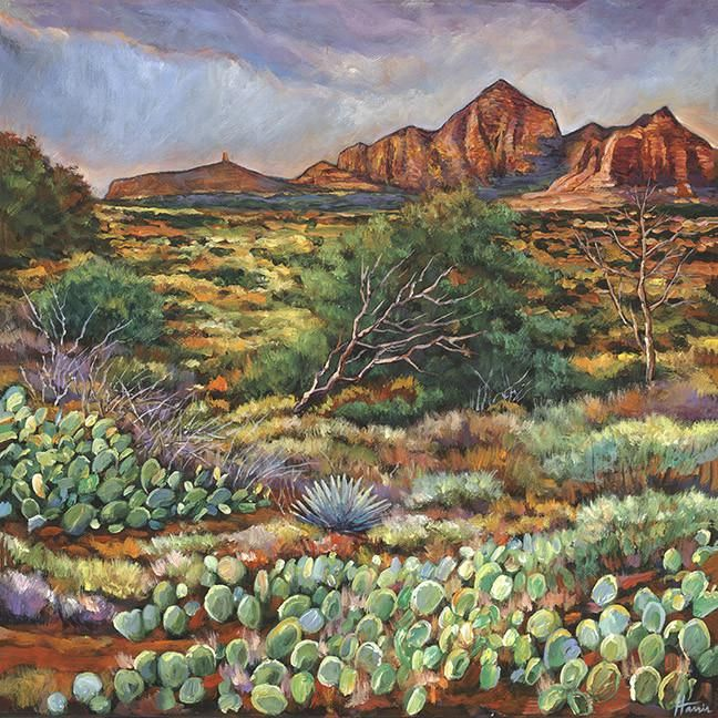 Arizona Modern Landscapes: 238 Best Jonathan Harris Paintings Images On Pinterest