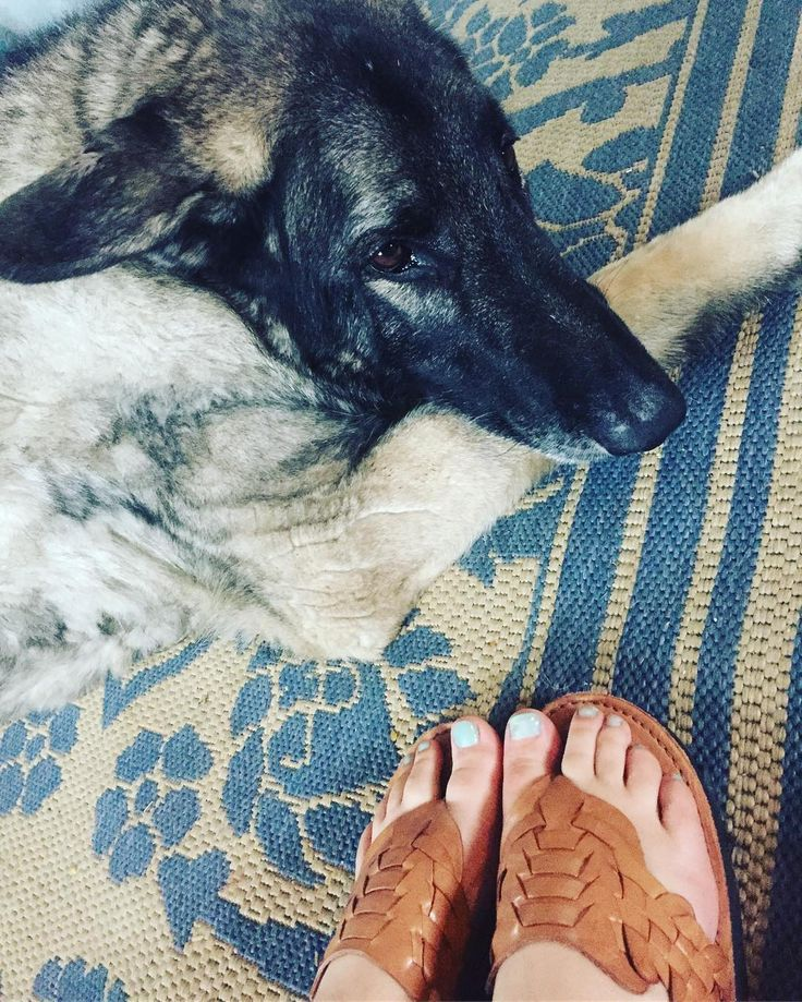 The Wolf is not #impressed with mint toes 😑 thank god my Classic Thong still look good 🎉#brand_x_huaraches #huaraches #flipflops #shilohshepherd