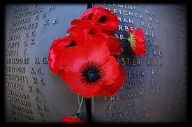 anzac day poppy - Google Search