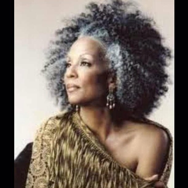 Grey Afro Hairstyles 1000 Images About Beautiful Grey Afro