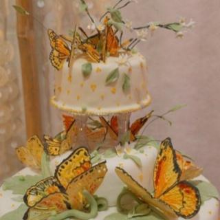 Wedding Ideas, Weddings, Bodas, Receptions, Wedding