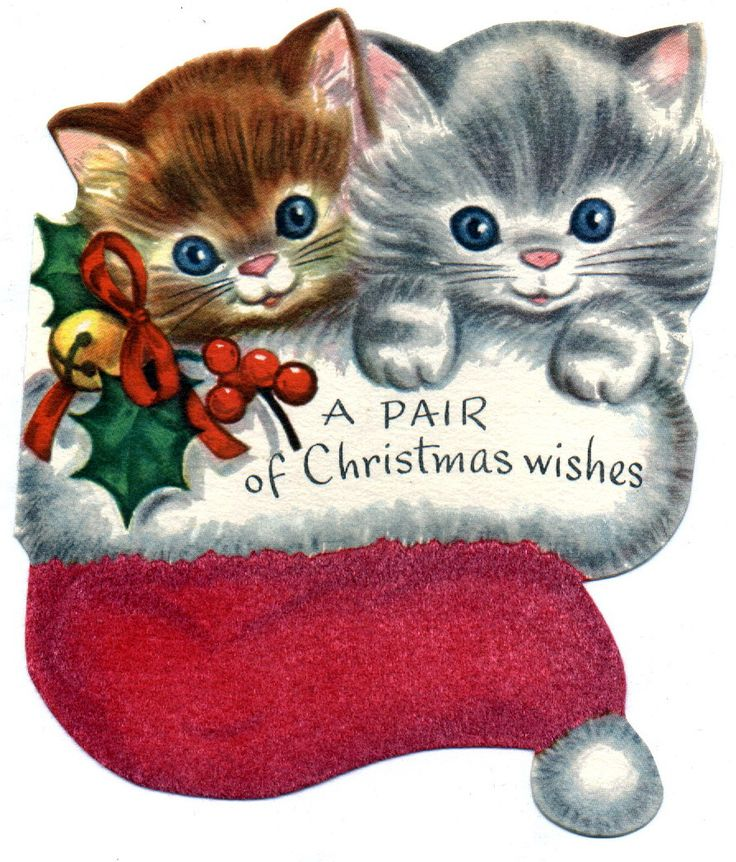 426 best christmas fun images on pinterest vintage christmas cards a pair of christmas kittens m4hsunfo