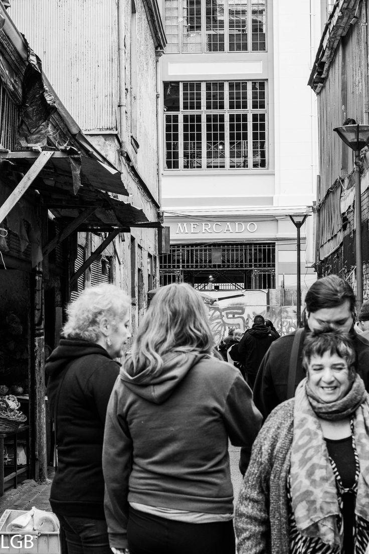 Valparaíso, V región Chile. Salida con Fototrekking en la ruta de Larraín.