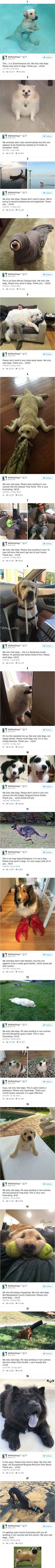 19 Times people failed to send dog pics to 'We Rate Dogs'
