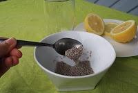 Les fibres des graines de chia régularisent la glycémie en ralentissantl'absorption des sucres.Il en résulte une énergie stable et une plus grande endurance.  Les graines de chia, absorbent les liquides et ralentissent la perte des électrolytes,permettant au corpsderester hydraté plus longtemps.  Les graines de chia sont une source de protéines complètes et faciles à digérer (sans qu'elles aient besoin d'être moulues).