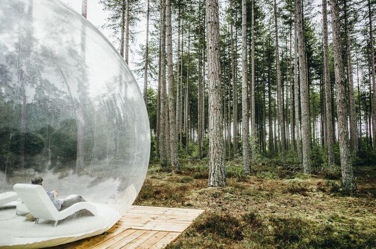 Superbe week-end glamping dans le centre de la France ! Une bulle dans la forêt : je vous raconte notre week-end parfait en amoureux, à 2h de Paris !
