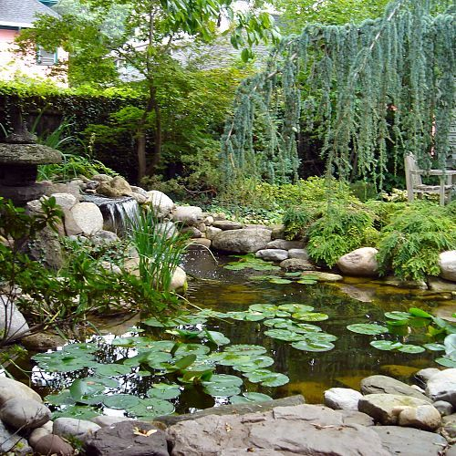 Beautiful Backyard Water Garden Pond Restoration, Remodel, Repair with LED Lighting in Rochester NY by Acorn Landscaping