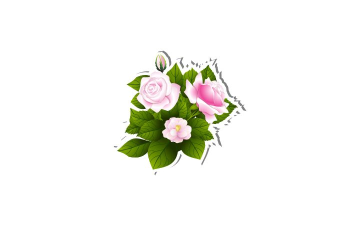 Flowers Vector Image  #flowers #vector #vectorpack  http://www.vectorvice.com/spring-special-vector-pack