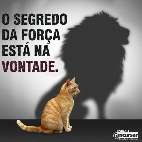 O SEGREDO DA FORÇA ESTÁ NA VONTADE. – livrariaconcursar.com.br: