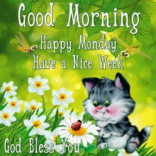 Good Morning, Happy Monday, Have A Nice Week monday good morning monday quotes good morning quotes happy monday good morning monday quotes monday morning facebook quotes monday image quotes happy monday morning happy monday good morning