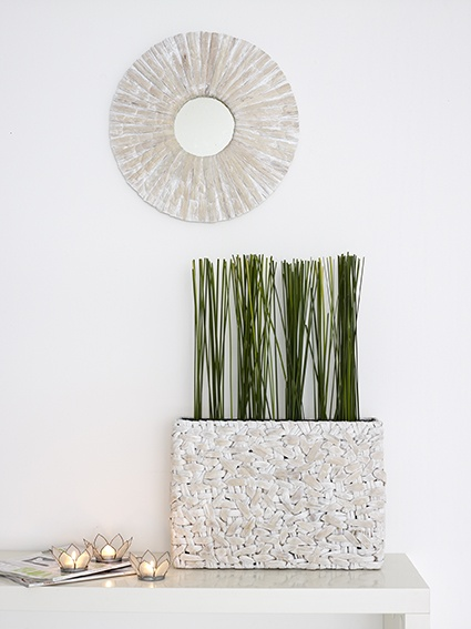 We LOVE this fresh look - Horizon mirror & Phoenix Vase. Stunning in white wash.