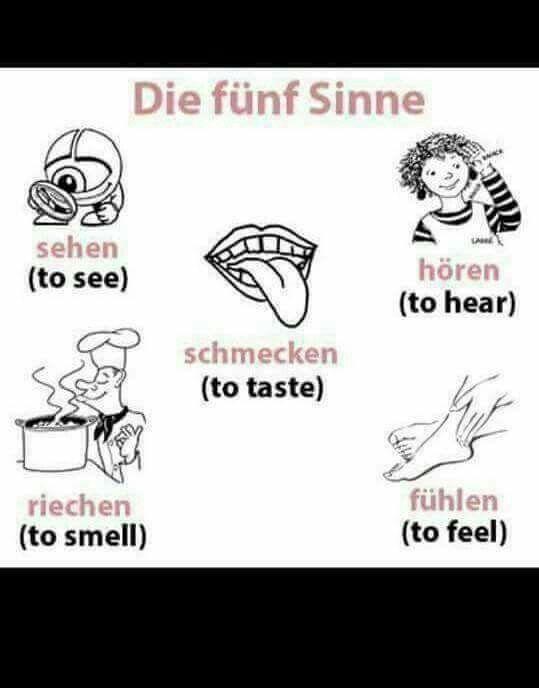 1710 best Hallo, Kinder, wir lernen Deutsch images on Pinterest ...