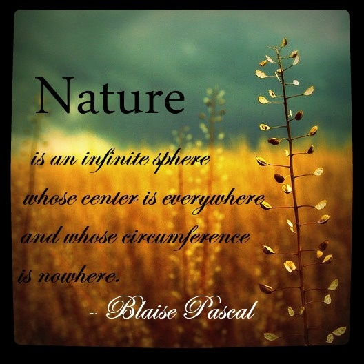 Nature Pictures With Quotes: 32 Best Transcendentalism Images On Pinterest