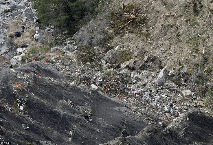 Red and yellow flags on the charred and rough terrain mark out sections of the crash site ...