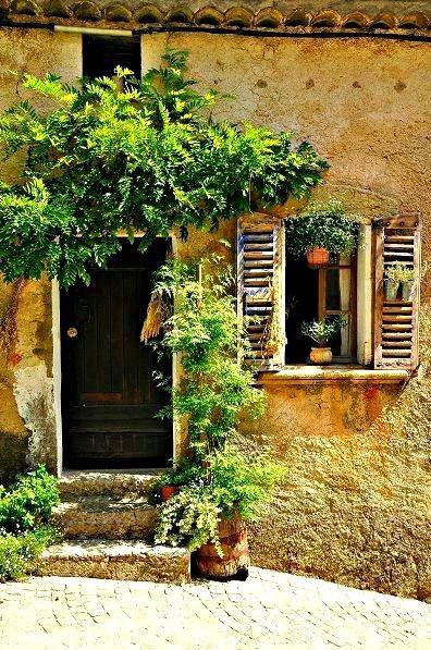 Écouter les cigales I #Provence I