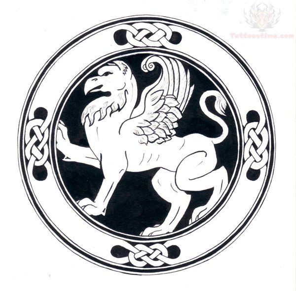 celtic gryphon tattoo - Google Search