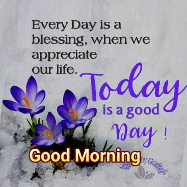 Every Day Is A Blessing When We Appreciate Our Life Inspirational Quotes Blessi Tuesday Quotes Good Morning Good Morning Inspirational Quotes Morning Blessings