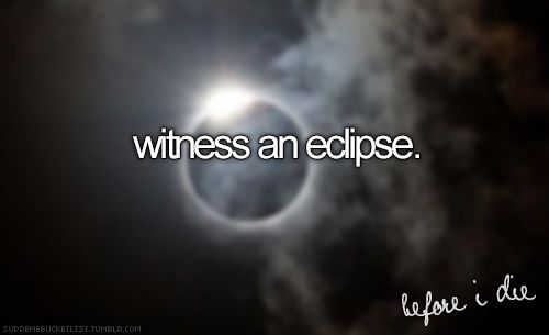 I've seen one solar eclipse - in Hawai'i. Lunar are more common but I've yet to see one.