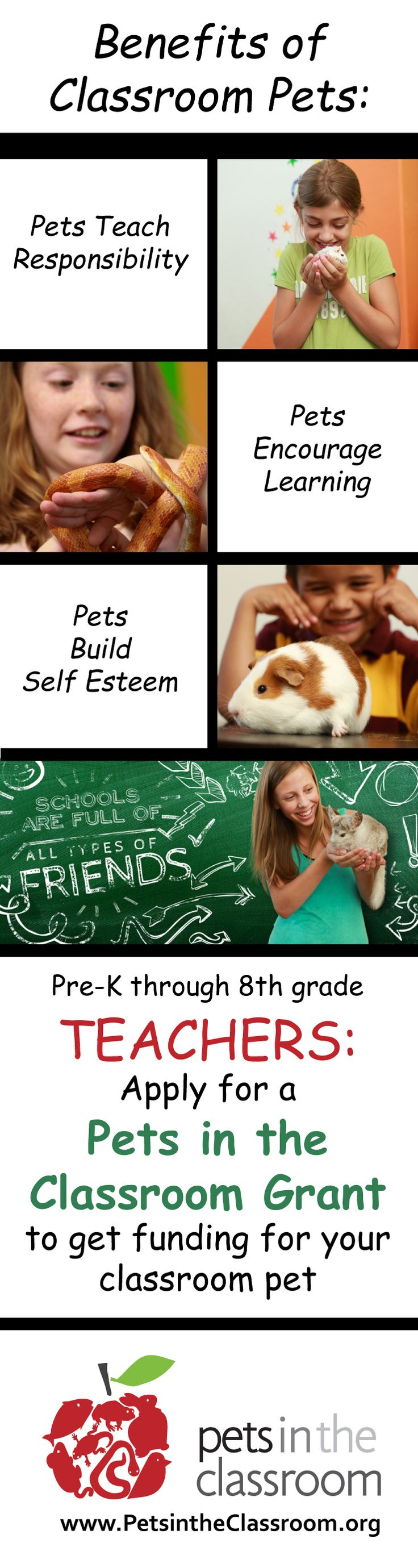 "This is awesome! ""There are numerous benefits to classroom pets. They bring many new ways to learn, enrich the classroom experience, and can make students excited for school. Plus they do so much more! Learn more about the benefits of classroom pets and how you can get a grant to have your own pet in the classroom!"" #classroompet #teachergrant #teachers"