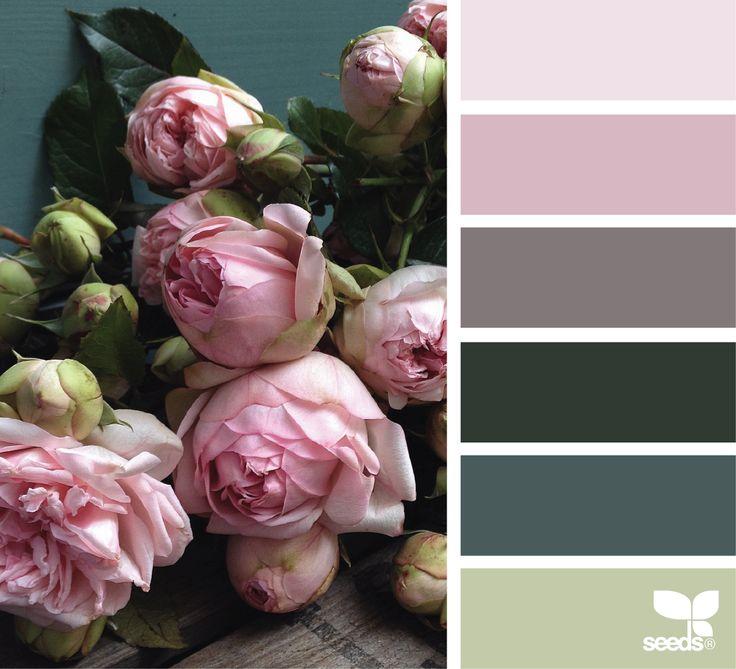 { flora palette } image via: @fairynuffflower
