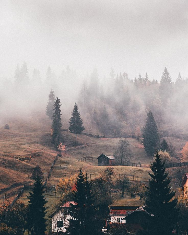 Nature and Autumn gifts from our planet merging together forming one magical combination. The journal from our trip to Romania is taking slightly longer than expected the trip was only a whole year ago so whats a few more days right? Wishing you all a Sunday filled with scenes like this