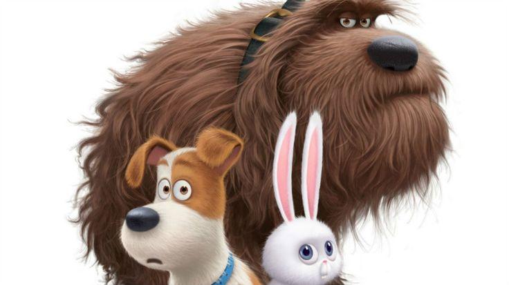 Tráiler de 'Mascotas', lo nuevo de Illumination Entertainment - http://www.actualidadcine.com/trailer-mascotas/