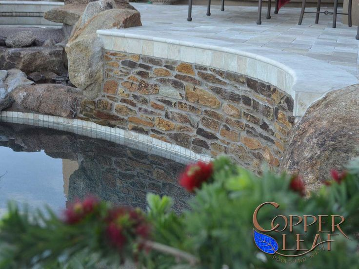 35 best pool water features images on pinterest swiming for Natural pools arizona