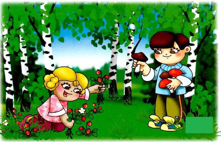 zbierať lesné plody, ktoré nepozná