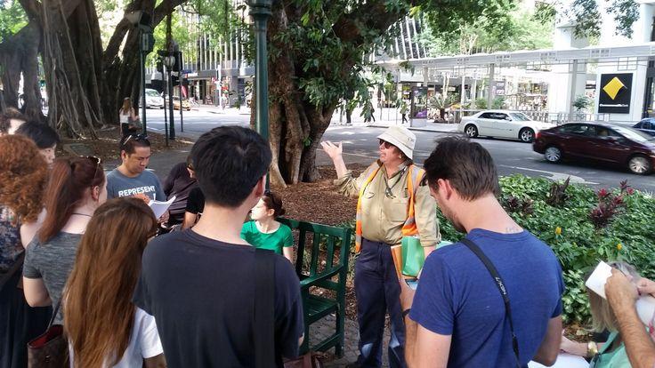 QCA_Product Design. 3rd year on-site briefing with senior tree specialist (aborist) Sitara. 118A Eagle St, Brisbane 'Fig Tree Island'. Semester 1, 2015