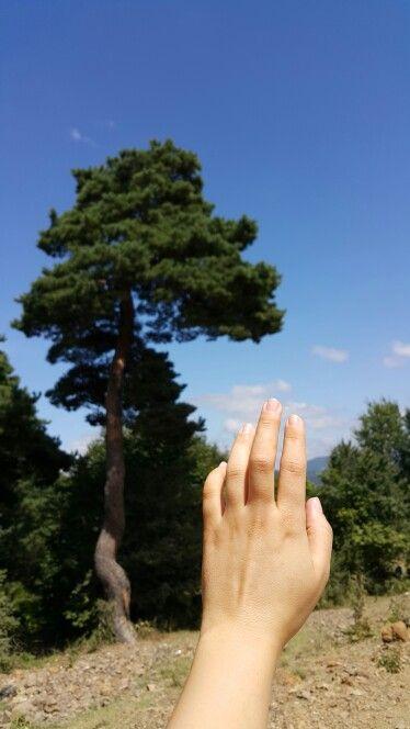 Bu güzel manzaraya dokunmak isterim.. #hand