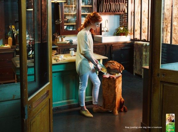 Purina Dog Chow  «Перестаньте кормить вашу собаку как мусорное ведро». Фирма по производству здоровой еды для собак пропагандирует любовь к меньшим друзьям. Это одна из самых оригинальных реклам собачьего корма, создатель которой — колумбийская команда Publicis.