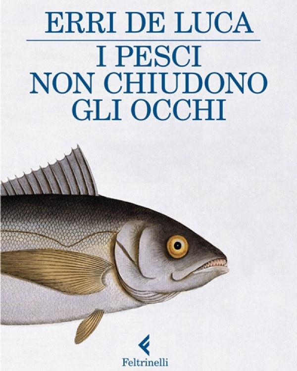 I pesci non chiudono gli occhi, by Erri De Luca