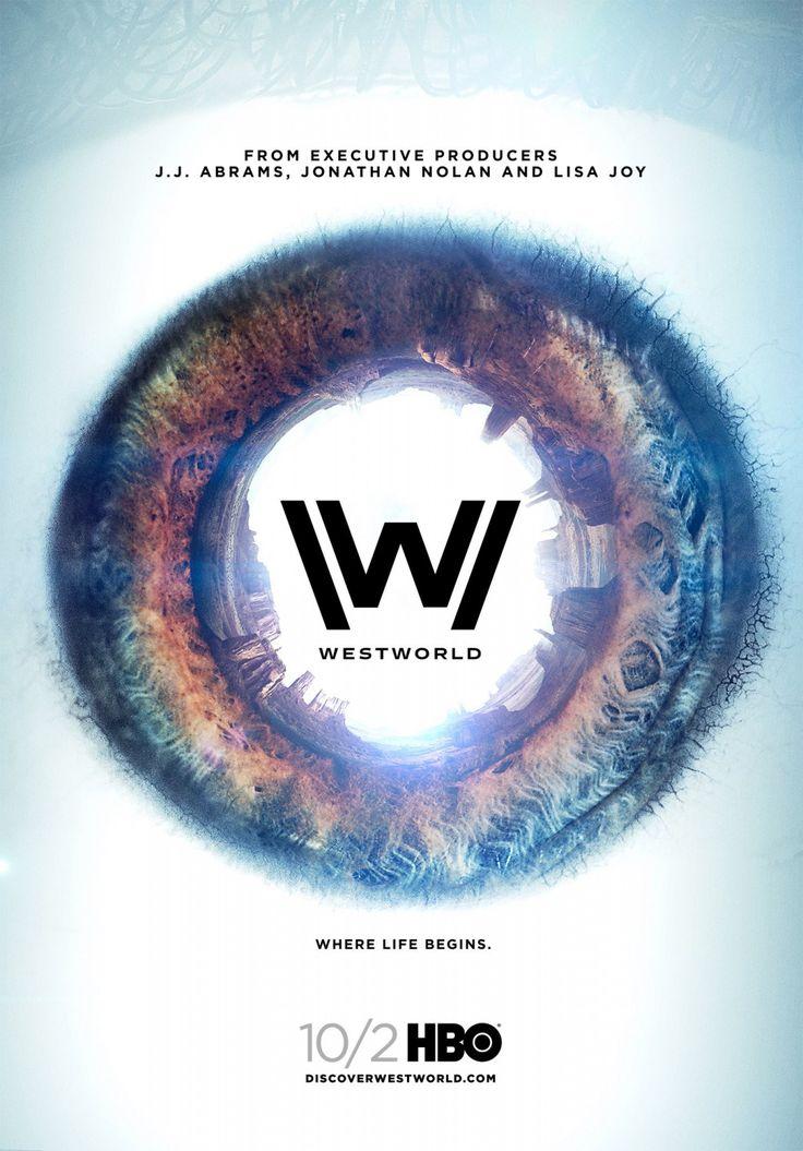 A Westworld, un parc d'attractions dernier cri, les visiteurs paient des fortunes pour revivre le frisson de la conquête de l'Ouest. Dolores, Teddy et bien d'autres sont des androïdes à apparence humaine créés pour donner l'illusion et offrir du dépaysement aux clients. Pour ces derniers, Westworld est l'occasion de laisser libre-cours à leurs fantasmes. Cet univers bien huilé est mis en péril lorsqu'à la suite d'une mise à jour, quelques robots comment à adopter des comportements…