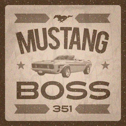 Safelite Quote: 16 Best Mustangs Images On Pinterest
