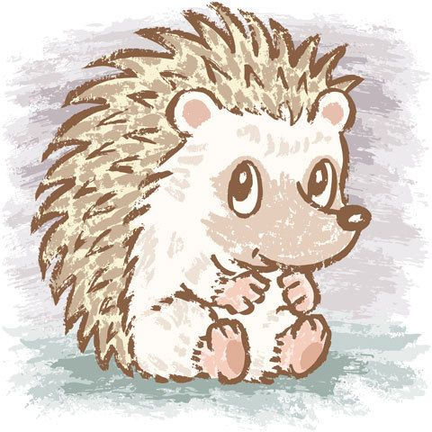 Hedgehog by Toru Sanogawa, via Behance
