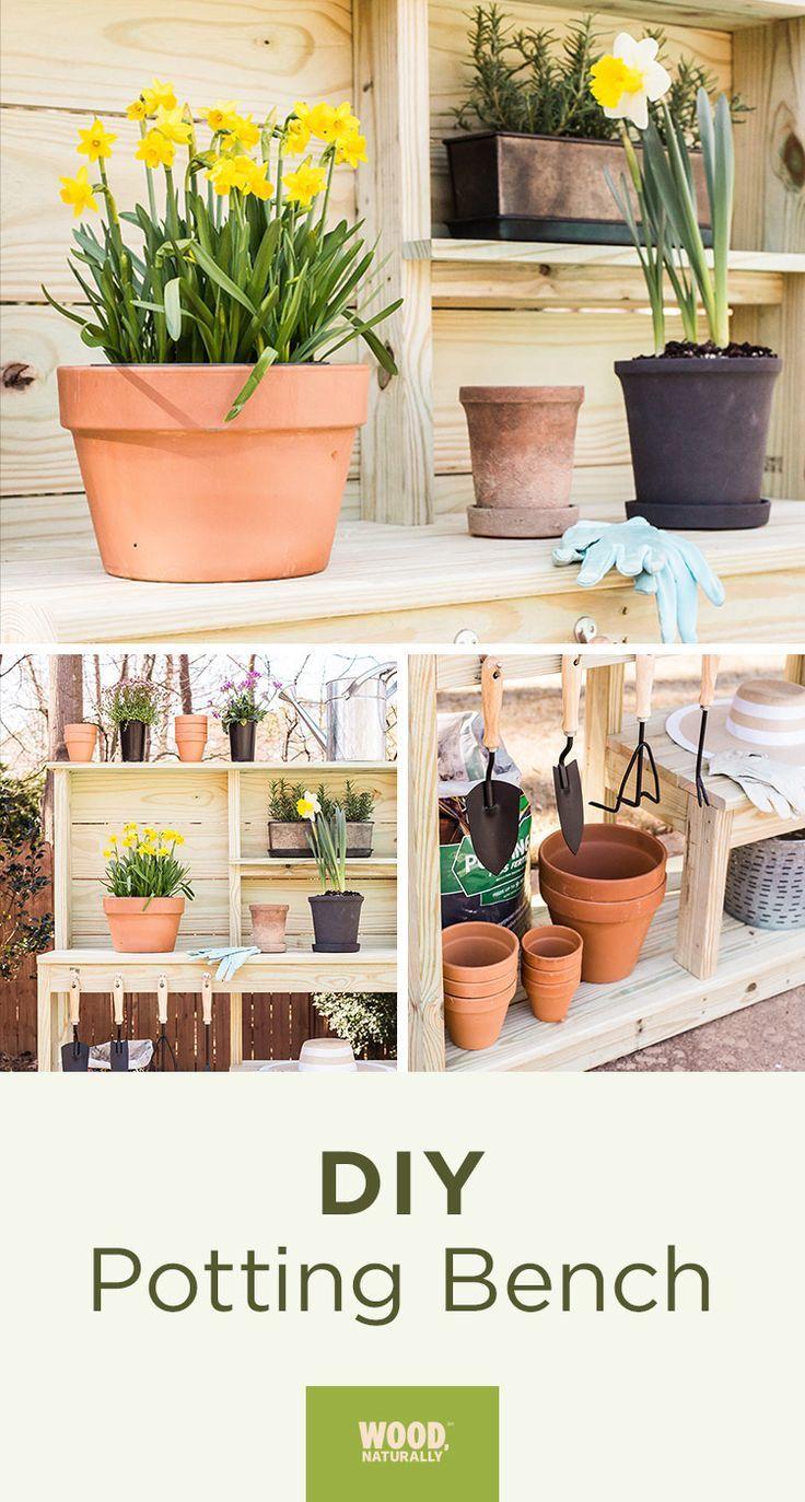 Renueva Los Basicos De Casa Este Verano Vaya Cambiazo Garden