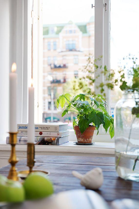 alvhem terrakotta kruka inspirera mera inspireramera inredningsblogg inredning blogg fönster inspiration fönsterinspiration