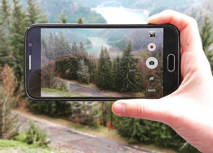 #nature #phone #forest #altitude