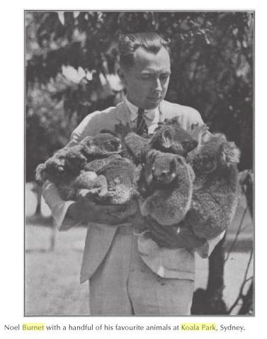 Noel Burnet. Twenty-three koalas were born in the park in the first 5 years. Burnet became the first successful koala breeder, and the foremost contemporary expert on the subject.