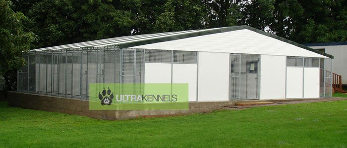Best dog boarding kennel building filter results by for Breeding kennel designs